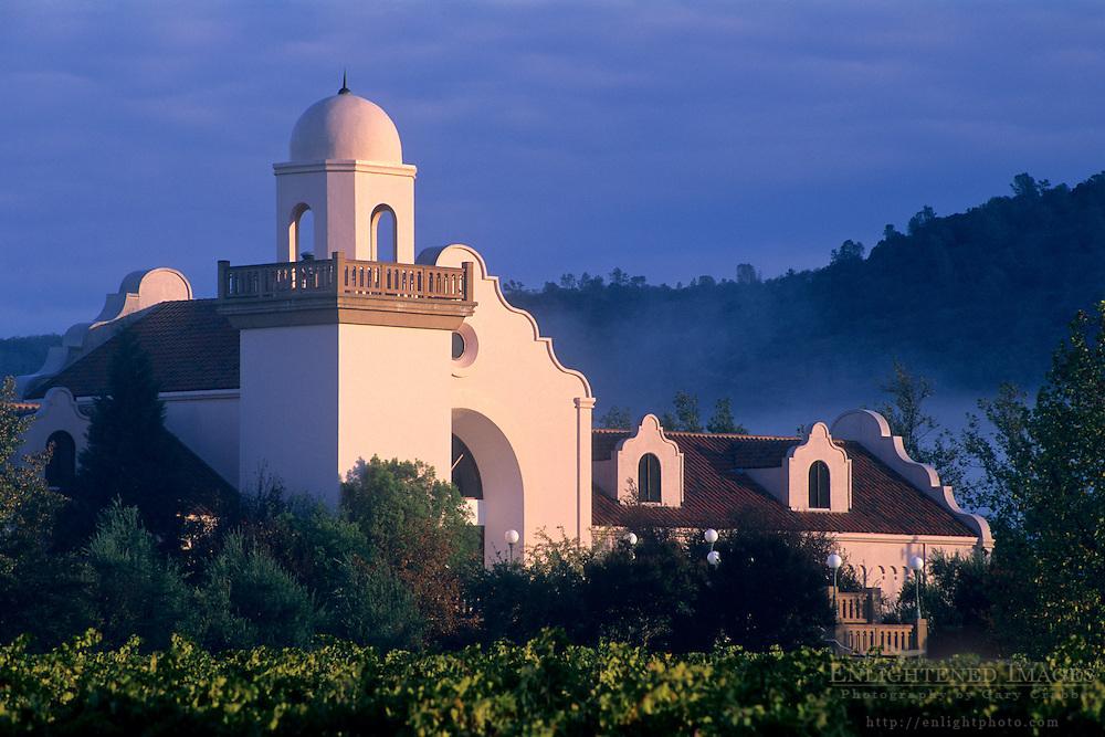 Sunrise light and storm clouds at Groth Vineyards, Oakville, Napa Valley, Napa County, California