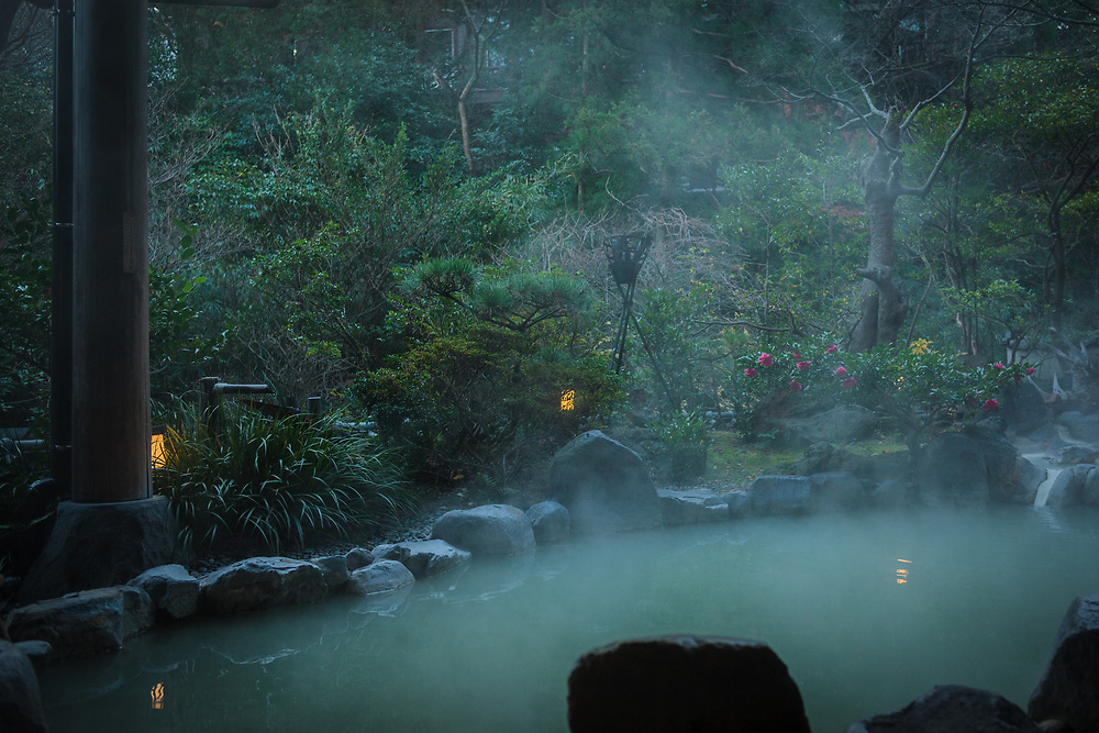 Life's simple pleasures ... soaking in sulphur rich onsen waters at dawn in Ryokan Fukuda-ya in Unzen. The tsubaki flowers were in full bloom on this cold December morning.