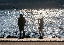 © Licensed to London News Pictures. 30/12/2019. London, UK. A couple next to the Serpentine enjoy an unseasonably mild sunny day in Hyde Park, London as forecasters predict warm weather and possibly the the warmest New Year's Eve for over a 170 years. Photo credit: Alex Lentati/LNP