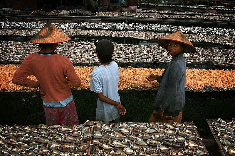 Kid worker at salt fish industry, Cilincing, Jakarta Indonesia