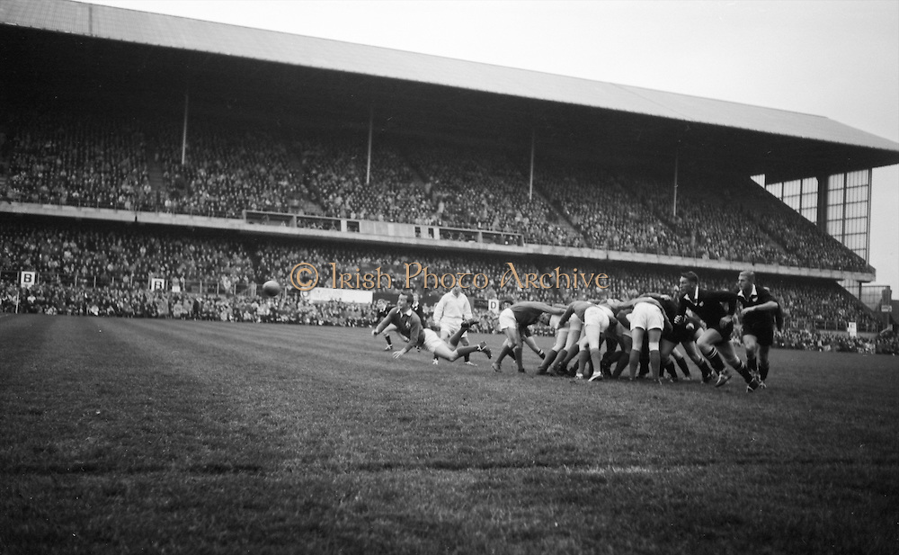 Irish scrum half JC Kelly, UCD, gets the ball away, ..Irish Rugby Football Union, Ireland v New Zealand, Tour Match, Landsdowne Road, Dublin, Ireland, Saturday 7th December, 1963,.7.12.1963, 12.7.1963,..Referee- H Keenen, Rugby Football Union, ..Score- Ireland 5 - 6 New Zealand, ..Irish Team, ..T J Kiernan, Wearing number 15 Irish jersey, Full Back, Cork Constitution Rugby Football Club, Cork, Ireland,..J Fortune, Wearing number 14 Irish jersey, Right Wing, Clontarf Rugby Football Club, Dublin, Ireland,..P J Casey, Wearing number 13 Irish jersey, Right Centre, University College Dublin Rugby Football Club, Dublin, Ireland, ..J C Walsh,  Wearing number 12 Irish jersey, Left Centre, University college Cork Football Club, Cork, Ireland,..A T A Duggan, Wearing number 11 Irish jersey, Left Wing, Landsdowne Rugby Football Club, Dublin, Ireland,..M A English, Wearing number 10 Irish jersey, Stand Off, Landsdowne Rugby Football Club, Dublin, Ireland, ..J C Kelly, Wearing number 9 Irish jersey, Captain of the Irish team, Scrum Half, University College Dublin Rugby Football Club, Dublin, Ireland,..P J Dwyer, Wearing number 1 Irish jersey, Forward, University College Dublin Rugby Football Club, Dublin, Ireland, ..A R Dawson, Wearing number 2 Irish jersey, Forward, Wanderers Rugby Football Club, Dublin, Ireland, ..R J McLoughlin, Wearing number 3 Irish jersey, Forward, Gosforth Rugby Football Club, Newcastle, England, ..W J McBride, Wearing number 4 Irish jersey, Forward, Ballymena Rugby Football Club, Antrim, Northern Ireland,..W A Mulcahy, Wearing number 5 Irish jersey, Forward, Bective Rangers Rugby Football Club, Dublin, Ireland,  ..E P McGuire, Wearing number 6 Irish jersey, Forward, University college Galway Football Club, Galway, Ireland,  ..P J A O' Sullivan, Wearing  Number 8 Irish jersey, Forward, Galwegians Rugby Football Club, Galway, Ireland,..N A Murphy, Wearing number 7 Irish jersey, Forward, Cork Constitution Rugby Football Club, Cork, Ireland,..New Zealand Team