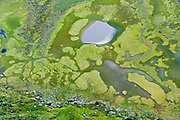 Aerial view of green marsh pattern with pond and sheep tracks. Knutshøe ridge offers outstanding scenery in Jotunheimen (the Home of the Giants, the highest section of the Scandinavian Mountains), Norway. To the north admire green Lake Gjende, and to the east see blue lake Nedre Leirungen. To the west, enjoy a fine view of the estuary built by the river of Leirungsåe entering the lake of Øvre Leirungen in the valley of Leirungsdalen. Starting from Vargebakken viewpoint on Norwegian national road RV 51 about 4k south of Gjendesheim, hike Knutshøe ridge (1517 meters elevation) in a 13k loop (5+ hours, 550 meters total gain). Two sections require steep, exposed scrambling, and the return loop along the lake requires rock hopping through brushy marshland.