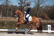 Kirsten Brouwer - Dancer<br /> Selectie WK Jonge Dressuurpaarden 2013<br /> © DigiShots