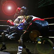 OLE amateur boxing
