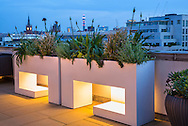London roof terrace, agapanthus and lavender in underlit contemporary troughs