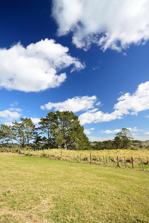 Farm Outside Auckland