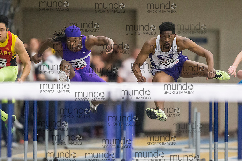 Windsor, Ontario ---2015-03-13--- Anthony Dandie and Izzy Ogieva of Western University compete in the 60m hurdles at the 2015 CIS Track and Field Championships in Windsor, Ontario, March 13, 2015.<br />