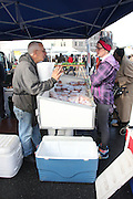 Brooklyn, New York. November 16, 2013. DiPaola relatives and employees sell turkeys at Brooklyn's Grand Army Plaza green market. 11/16/2013. Photo by Jess Scanlon/NYCity Photo Wire