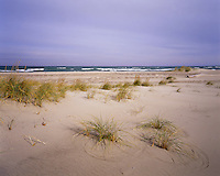 BB07038-03...INDIANA - Sand along the shore of Lake Michigan in Indiana Dunes National Lakeshore.