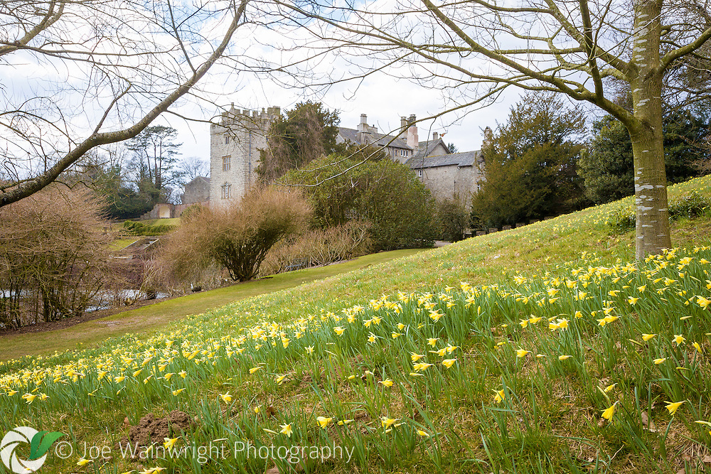 Early spring at Sizergh Castle, Cumbria