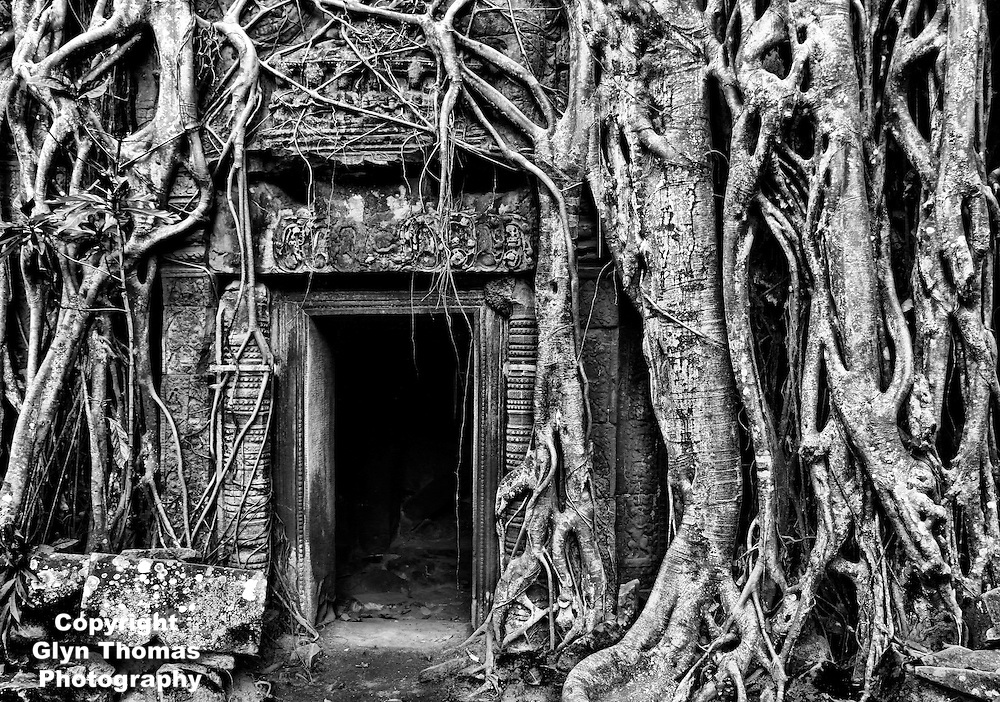 Doorway at Ta Prohm temple overgrown with Strangler Fig tree roots at Angkor, Cambodia
