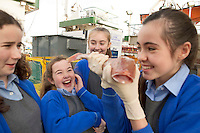 05/12/2013 Ann Hume, Jenna Byrnes and Leanne Neary with Ciara MacDonald, holding fish) from Scoil Mhuire Oranmore Galway who won a tour of the Marine Institute's Flagship research vessel The Celtic Explorer for her classmates with a poem she wrote. Photo:Andrew Downes.