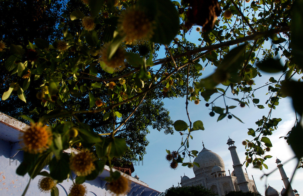 A view of the Taj mahal at Agra July 13, 2007. Prashanth Vishwanathan