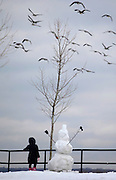 Agustina Lee, 6, watches a flock of geese while building a snowman at Overpeck County Park in Leonia.