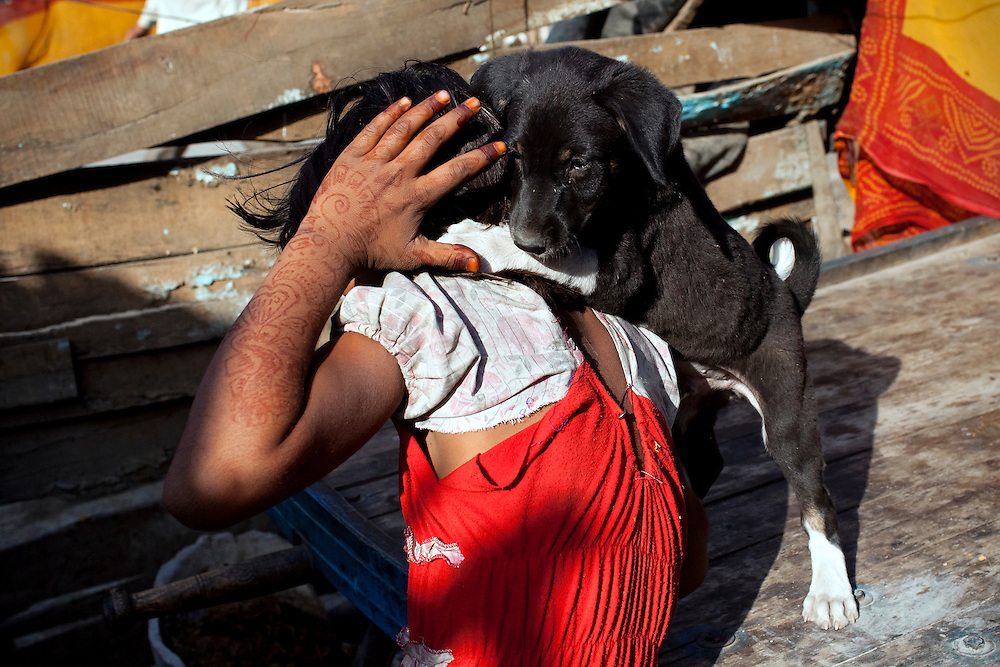 While in the front yard of her newly built home, Poonam, 10, is playing with a stray puppy taken from the streets of Oriya Basti, one of the water-contaminated colonies in Bhopal, central India, near the abandoned Union Carbide (now DOW Chemical) industrial complex, site of the infamous '1984 Gas Disaster'.