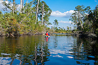 Images of the Okefenokee Swamp in  south east Georgia