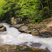 &quot;Runneth Over&quot;<br />