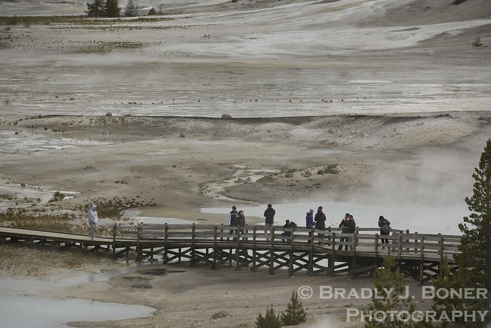 Norris Geyser Basin, Yellowstone National Park