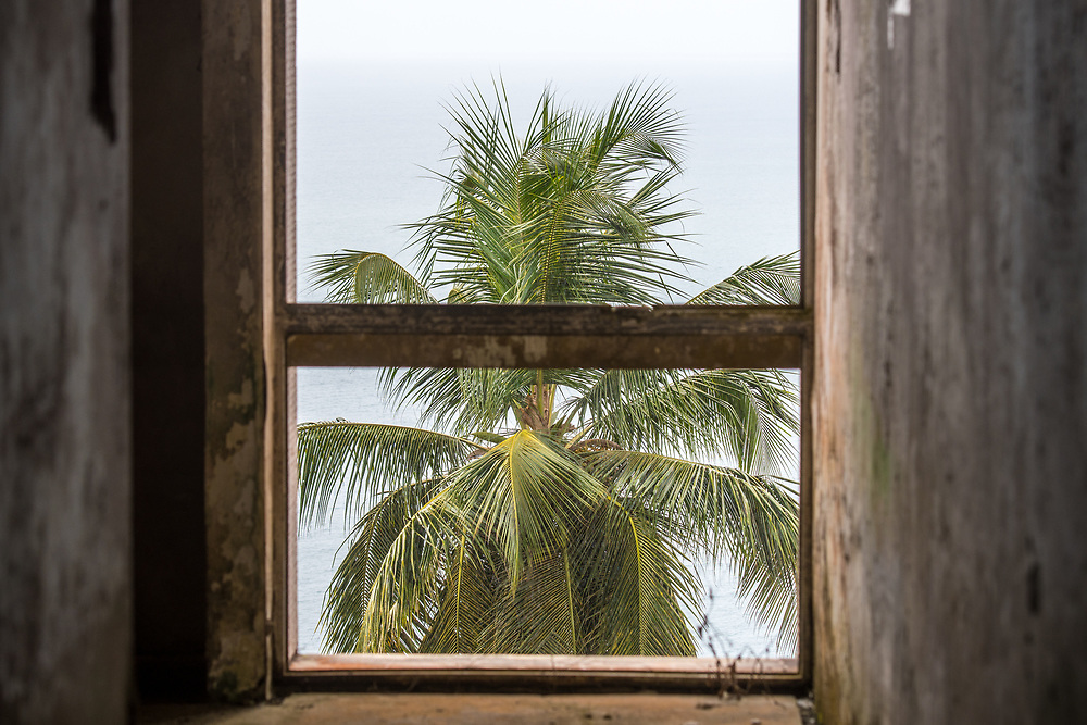 A palm tree outside of the abandoned Ducor Hotel, once the most prominent hotels in Monrovia, Liberia