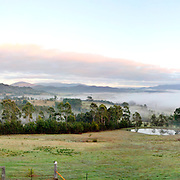 Early morning fog at a farm in Towamba in rural New South Wales, Australia