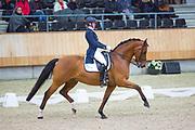 Kim Jacobi - Horses2fly Apres Minuit<br /> KNHS Indoorkampioenschappen 2018<br /> © DigiShots