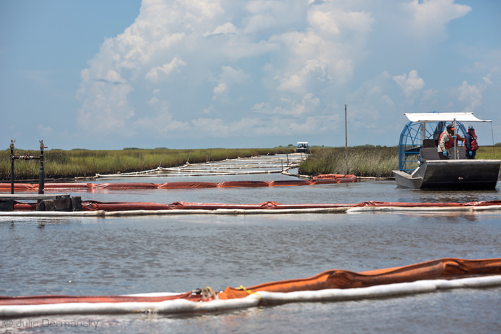 Airboat that is part of a cleanup crew trying to remove an estimated 4,200 gallons of crude oil attributed to oil and gas extraction company Hilcorp spilled in the marsh near Lake Grande Ecaille, part of Barataria Bay, on July 25.