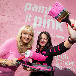 ICS Paint it Pink