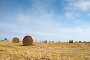 Bales of Hay 01