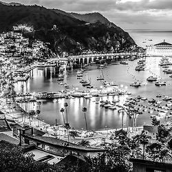Catalina Island at night black and white picture. Santa Catalina Island Avalon Bay at night from above with the Avalon Casino, Avalon Pier, Holly Hill House, and the Avalon waterfront along the Pacific Ocean.