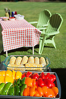 Slices of bell peppers and sweet corn in glass containers with dining table and chairs at lawn
