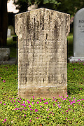 A tombstone surrounded by blooming clover in the Saint Philips Episcopal Church Cemetery along Church Street in historic Charleston, SC.