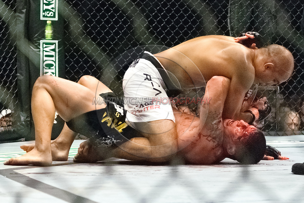 "NEWCASTLE, ENGLAND, UNITED KINGDOM, JANUARY 19 2008: BJ Penn (top) lands an elbow to the head of Joe Stevenson during ""UFC 80: Rapid Fire"" inside the Metro Radio Arena in Newcastle, England on January 19, 2008."