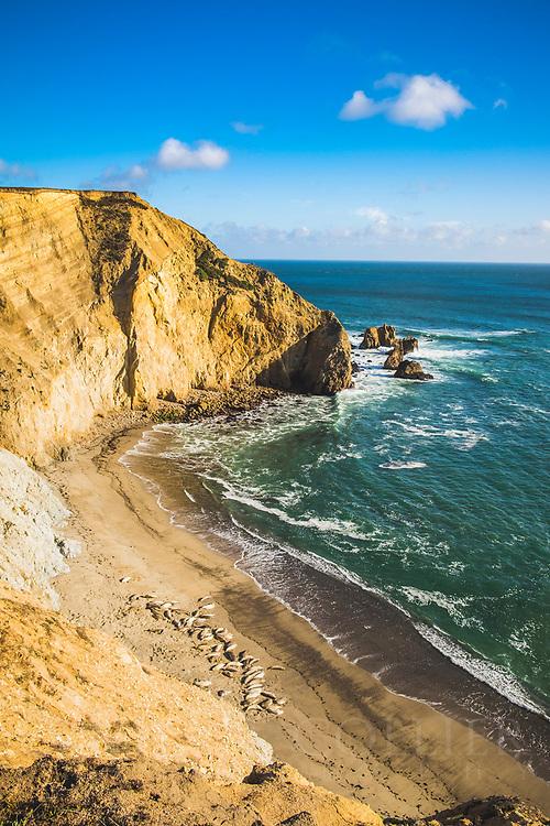 Drakes Beach, Point Reyes National Seashore, California