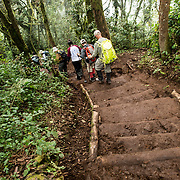 A group of hikers on the steep trail descending through the forest from Mweka Camp to Mweka Gate at the end of an expedition climbing Mt Kilimanjaro.