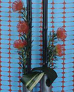 garden club flower show 041510