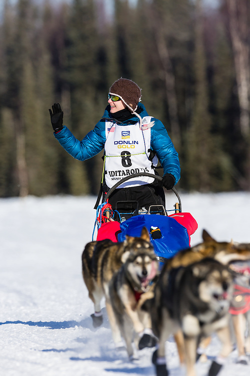 Musher Yvonne Dabakk competing in the 42nd Iditarod Trail Sled Dog Race on Long Lake after leaving the restart on Willow Lake in Southcentral Alaska.  Afternoon. Winter.