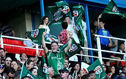 London Irish fans - Mandatory by-line: Robbie Stephenson/JMP - 24/05/2017 - RUGBY - Madejski Stadium - Reading, England - London Irish v Yorkshire Carnegie - Greene King IPA Championship Final 2nd Leg