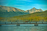 Elk crossing the bridge on Pyramid Lake with the Canadian Rockies in the background<br />