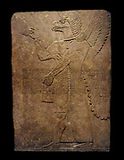 Assyrian winged genie figure depicted in a relief from the Noth West Palace at Nimrud, Iraq. Reign of Ashurnaasipal II 883-859 BC