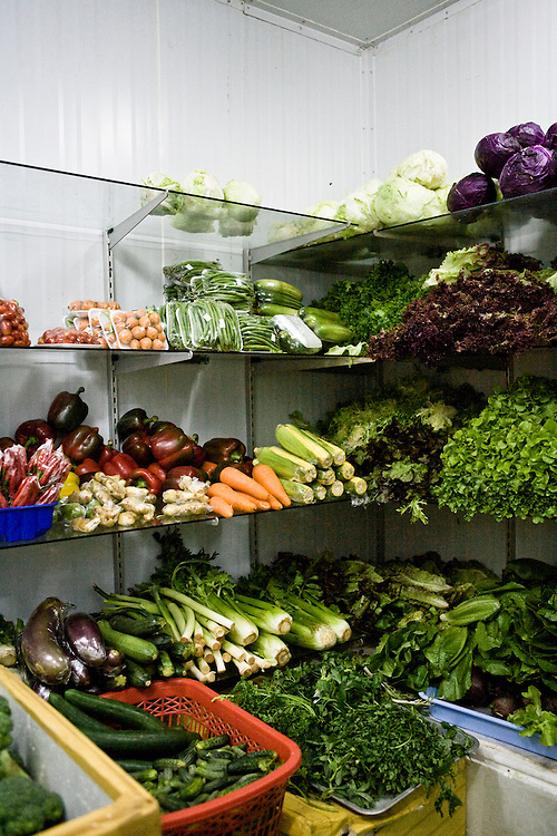 Veggies walk in cooler