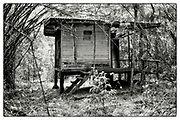 """An exterior view of an abandoned Monk's meditation hut set within a dense bamboo forest, in the grounds of the Pha Koeng Buddhist temple, Chaiyaphum Province, Northeast Thailand, 2014. From the series: """"Pha Koeng"""" (2013-2017). (2011-2017)."""