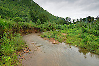 Jungle, rainforest and river Kanchanaburi Province, Thailand