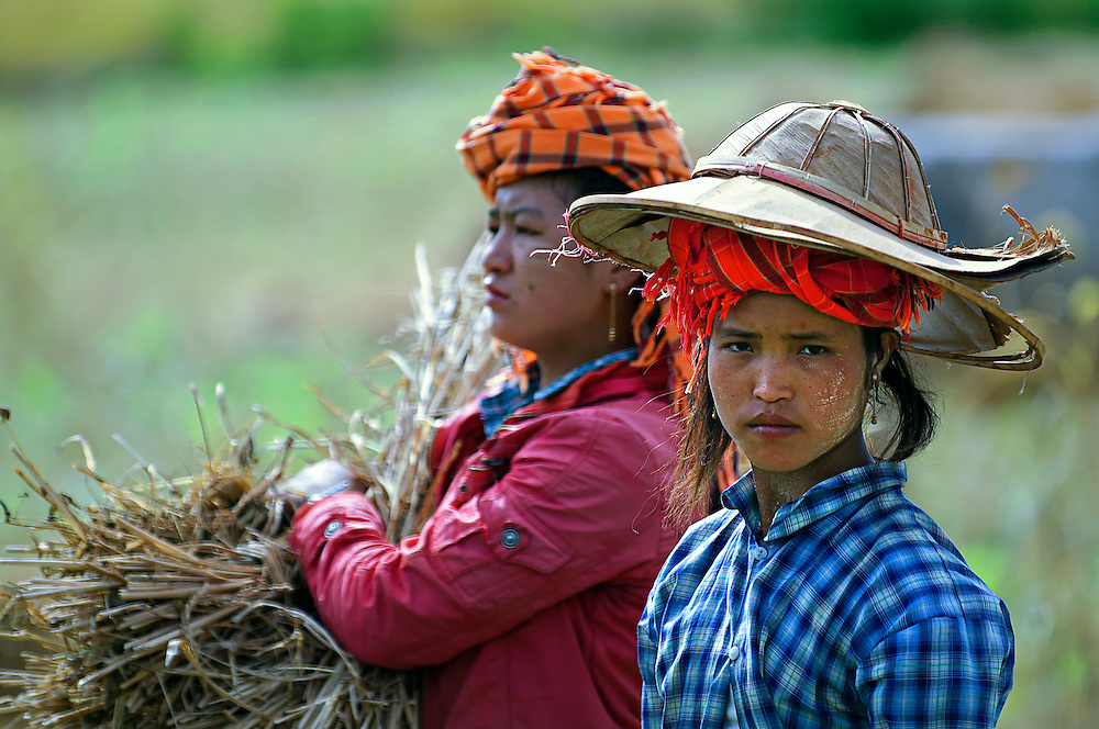 Farmers in a field on the road to Lake Inle, Myanmar.