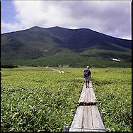Boardwalk protects meadow trampling human feet leads to Lake Rausu, a rain fed lake without any outlet high in the mountains of the Shiretoko National Park, an UNESCO World Heritage Site, Hokkaido, Japan.