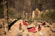 Abiquiu, New Mexico, pottery shards