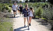 Unison Challenge Walk, Te Awa Park, Napier, New Zealand, Sunday, 08 September, 2013. Credit: John Cowpland / alphapix