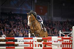 Sleiderink Sjaak (NED) - W Zarah<br /> KWPN Stallion Selection - 's Hertogenbosch 2014<br /> © Dirk Caremans