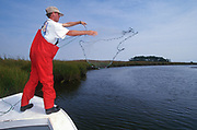 SHELLTOWN, MD, USA - 1997/09/25: A researcher for the Maryland Department of Natural Resources casts a net to look for signs of the flesh eating Pfiesteria disease on fish stocks in the Pocomoke River along the Chesapeake Bay September 25, 1997 in Shelltown, Maryland. The outbreak caused a loss of $43 million dollars in fishing revenue and is believed to be caused by the runoff of chicken manure from farms in the area. (Photo by Richard Ellis)