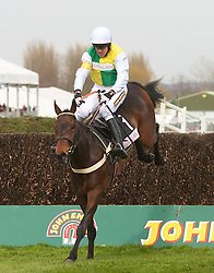 LIVERPOOL, ENGLAND - Friday, April 9, 2010: Burton Port ridden by Barry Geraghty jumps the last fence before winning the second race during the second day of the Grand National Festival at Aintree Racecourse. (Pic by David Rawcliffe/Propaganda)