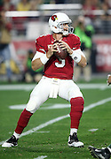 Arizona Cardinals quarterback Carson Palmer (3) drops back to pass in the second quarter during the NFL NFC Divisional round playoff football game against the Green Bay Packers on Saturday, Jan. 16, 2016 in Glendale, Ariz. The Cardinals won the game in overtime 26-20. (©Paul Anthony Spinelli)
